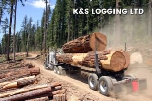 K and S Western Red Cedar on Truck